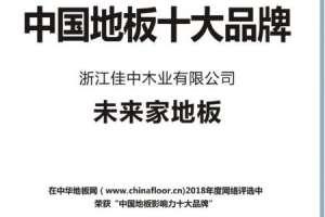 未来家地板荣获中国地板十大品牌加料机